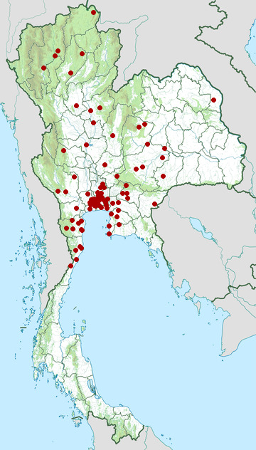 Distribution map of Long-nosed whip snake, Ahaetulla nasuta in Thailand