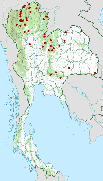 Distribution map of Puff-throated bulbul, Alophoixus pallidus in Thailand