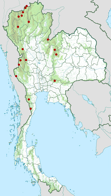 Distribution map of Bar-backed partridge, Arborophila brunneopectus in Thailand