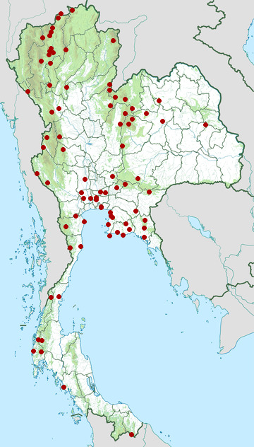 Distribution map of Black-winged cuckooshrike, Lalage melaschistos in Thailand