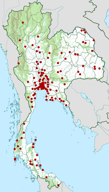 Distribution map of Jodi's pipe snake, Cylindrophis jodiae in Thailand