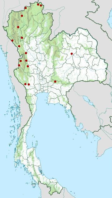 Distribution map of Blue-throated blue flycatcher, Cyornis rubeculoides in Thailand