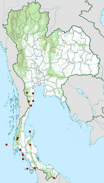 Distribution map of Dusky leaf monkey, Trachypithecus obscurus in Thailand