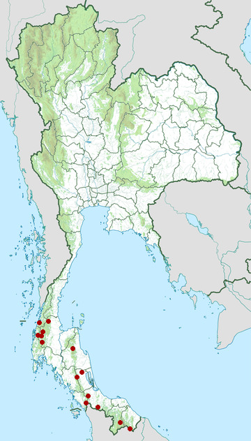Distribution map of Great argus, Argusianus argus in Thailand