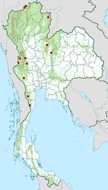 Distribution map of Grey peacock-pheasant, Polyplectron bicalcaratum in Thailand