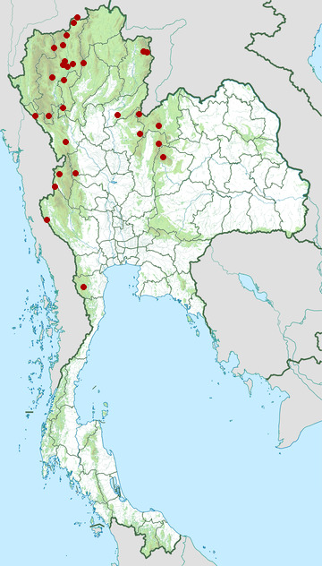 Distribution map of Grey treepie, Dendrocitta formosae in Thailand