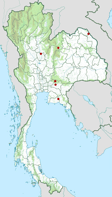 Distribution map of Guangdong grass frog, Hylarana macrodactyla in Thailand