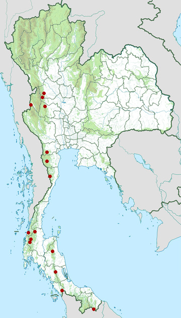 Distribution map of Malayan tapir, Tapirus indicus in Thailand