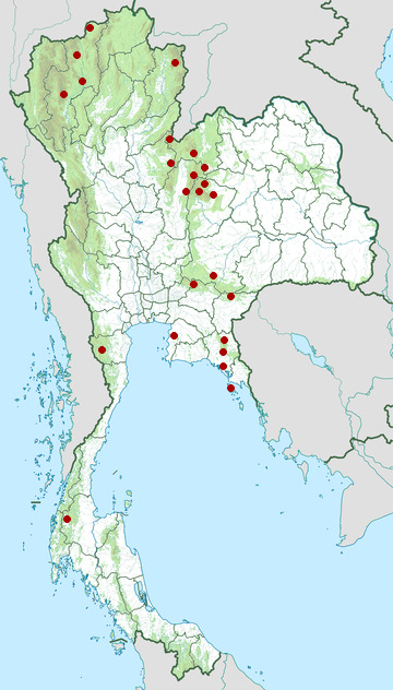 Distribution map of Moustached barbet, Psilopogon incognitus in Thailand