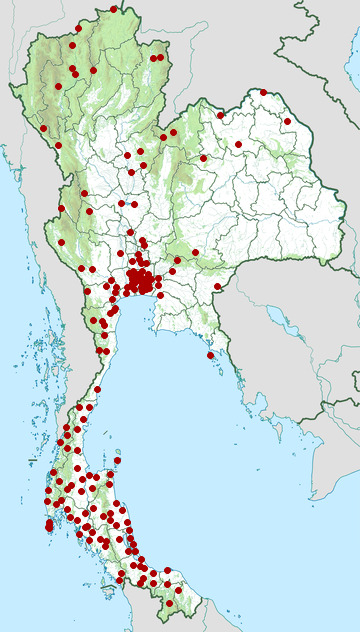 Distribution map of Monocled cobra, Naja kaouthia in Thailand