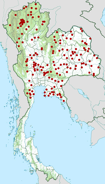 Distribution map of Indo-Chinese spitting cobra, Naja siamensis in Thailand