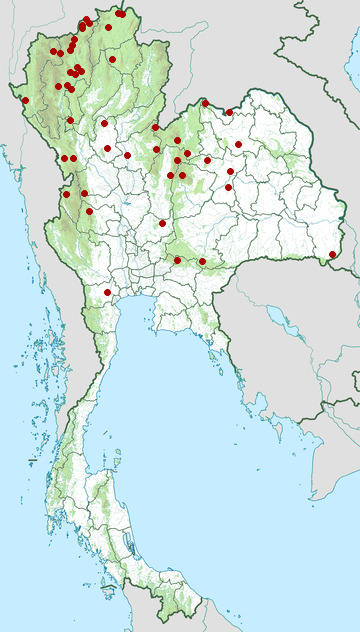 Distribution map of Oriental turtle dove, Streptopelia orientalis in Thailand