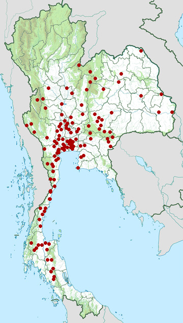 Distribution map of White-lipped pit viper, Trimeresurus albolabris in Thailand
