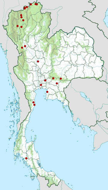 Distribution map of Yellow-legged buttonquail, Turnix tanki in Thailand