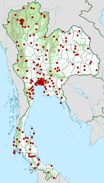 Distribution map of Common sunbeam snake, Xenopeltis unicolor in Thailand